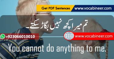 English to Urdu sentences.www.testdunya.com