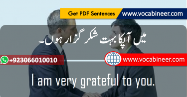 English to Urdu Sentences