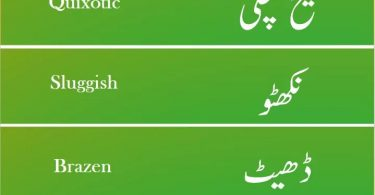 Essential English Words for Exams in Urdu PDF, CSS English Vocabulary PDF, PPSC English Vocabulary PDF, UPSC English Vocabulary PDF, IAS English Vocabulary PDF, FPSC English Vocabulary PDF, TOEIC English Vocabulary PDF, IELTS English Vocabulary PDF, High frequency English words in URDU PDF, High frequency words in Hindi PDF