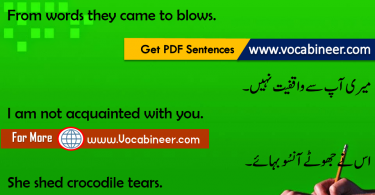 Short English Sentences With Urdu Download PDF Set 23
