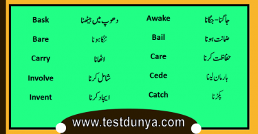 English vocabulary with Urdu Meanings PDF, Words in Urdu PDF, Vocabulary in Urdu PDF, Important English words with Urdu meanings PDF