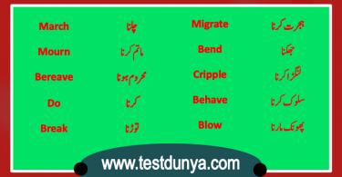 English Vocabulary list in Urdu PDF, Basic English words with Urdu Meanings PDF, Words in Urdu PDF, Vocabulary in Urdu PDF, Important English words with Urdu meanings PDF