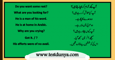 English to Urdu conversation for spoken English, Basic English sentences in Hindi
