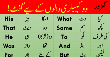 English Vocabulary list with meanings PDF, Basic English words with Urdu Meanings PDF, Words in Urdu PDF, Vocabulary in Urdu PDF, Important words with meanings PDF