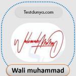 Wali Muhammad name signature