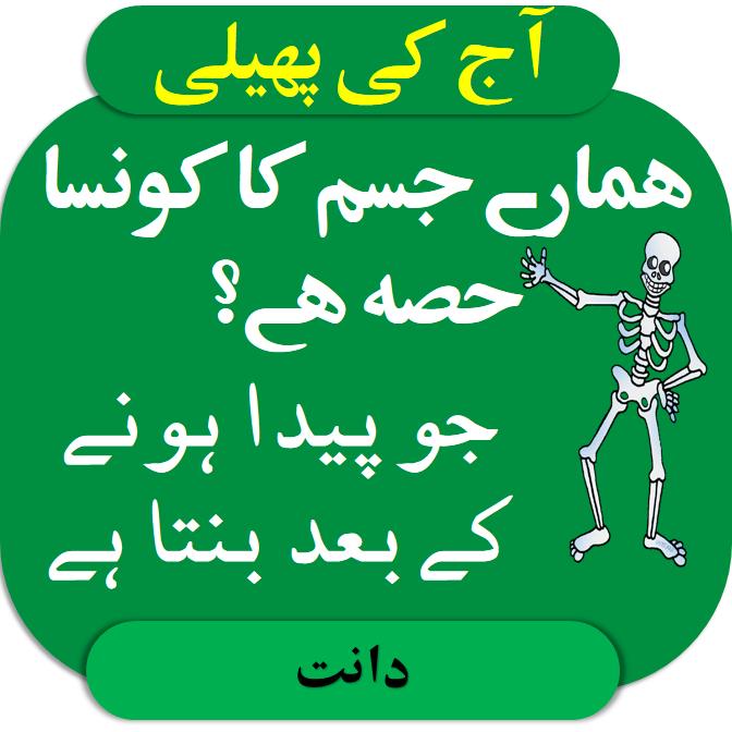Riddles in urdu for kids answer hmaary jism ka konsa hissa hai jo paida hony ky baad banta hai