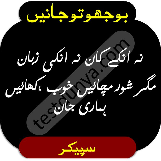 Riddles in urdu for kids answer 1