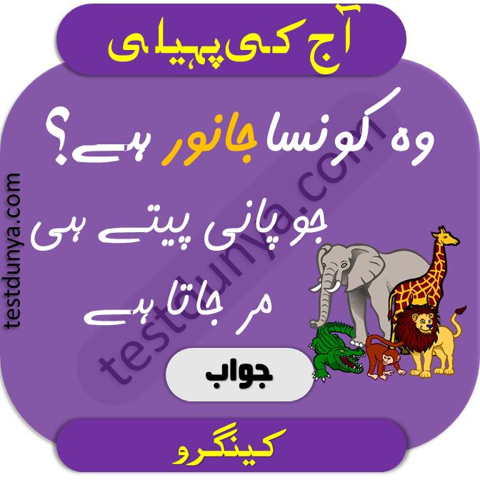 Riddles in urdu for kids answer 6 woh konsa janwar hy jo paani peety he marr jata hy