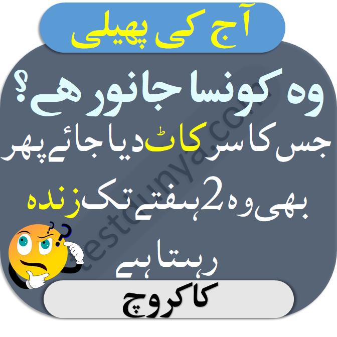 Urdu Paheliyan with Right Answers wo konsa janwar hai jis ka sar kaat diya jaaye phir bhi wo 2 hafty tak zinda rehta hai