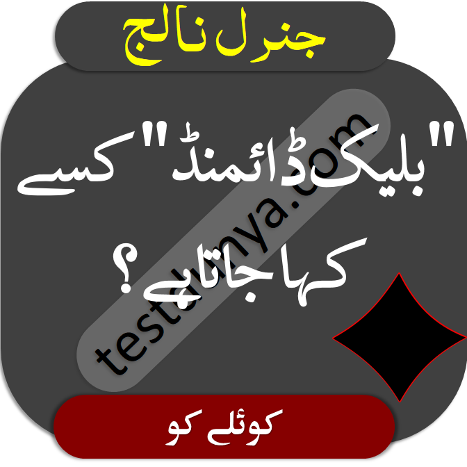 Genius Questions and Answers in Urdu here are some interesting and mind questions to test your general knowledge and IQ level each question contains its correct answer.