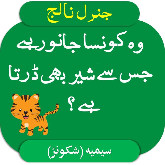 General Knowledge Questions and Answers in Urdu wo konsa janwar hai jis sy shair bhi darta hai