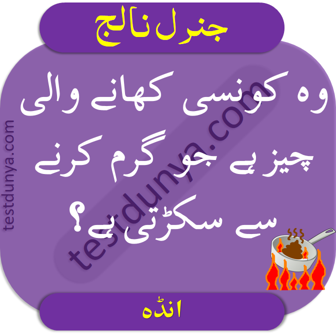 IQ Questions with Answers in Urdu find brain questions with their answers learn mind questions and answers in Urdu and Hindi